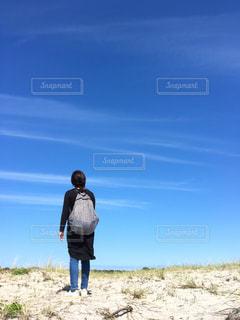 デンマークの丘🇩🇰の写真・画像素材[1185032]