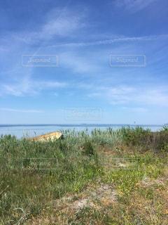 Samsøの海🇩🇰の写真・画像素材[1224486]