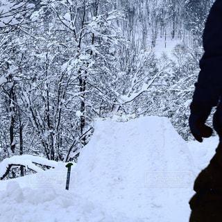 北海道の山での一枚。北海道の最高の雪と最高の山での一枚の写真・画像素材[994439]
