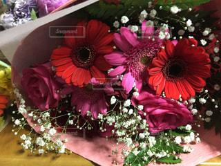 ダリアの花束の写真・画像素材[996220]
