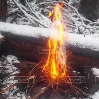 冬の焚き火の写真・画像素材[995898]