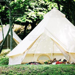 森のキャンプの写真・画像素材[996183]