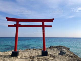 白浜神社⛩の写真・画像素材[1043377]