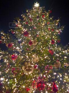 クリスマス ツリーの写真・画像素材[1610033]