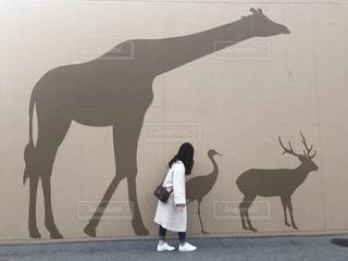 馬の隣に立っている人の写真・画像素材[2207648]