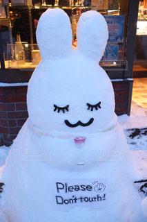 雪うさぎの写真・画像素材[1007902]