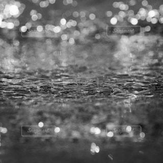 近くに雨のの写真・画像素材[1125815]