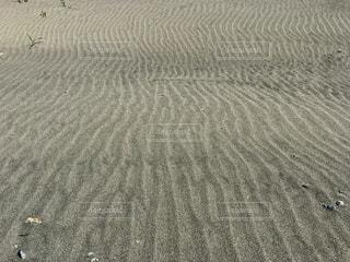 静岡の中田島砂丘の写真・画像素材[1372266]