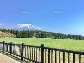 朝霧高原からの富士山の写真・画像素材[1387151]