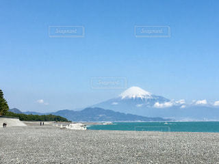 三保の松原からの富士山の写真・画像素材[1388469]