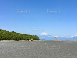 三保の松原からの富士山の写真・画像素材[1388480]