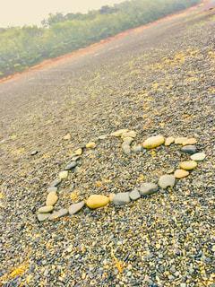 静岡の三保の松原の写真・画像素材[1388505]