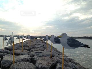 佐久島の写真・画像素材[2501993]