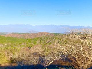 茶臼山高原道路の紅葉の写真・画像素材[2914594]