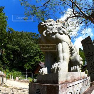 ツリーの前で大きい石造りの彫像の写真・画像素材[997813]