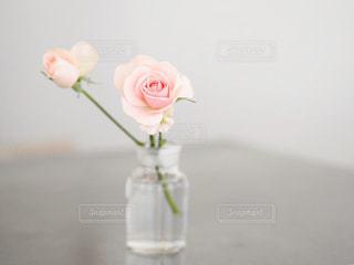テーブルの上の花の花瓶の写真・画像素材[997571]