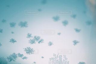 寒い日の写真・画像素材[1022473]