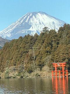 富士山と鳥居の写真・画像素材[998381]