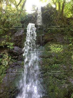 森の中の滝の写真・画像素材[1157255]