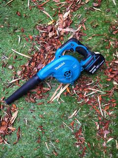 庭の落ち葉掃除の写真・画像素材[1835800]