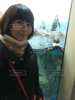 ペンギンと一緒にの写真・画像素材[1016426]