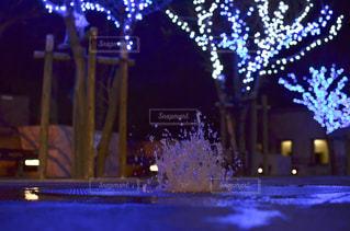 夜の噴水の写真・画像素材[1000800]
