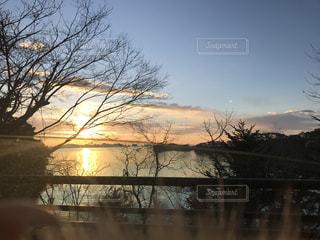 背景の木と水体の写真・画像素材[1001251]