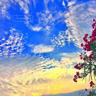 朝焼けと青空の写真・画像素材[1001428]