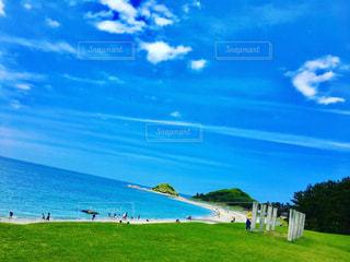 志賀島の海の写真・画像素材[1008029]