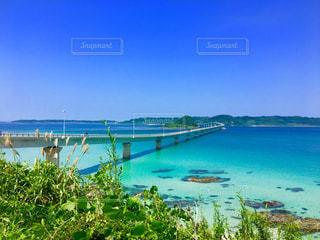 角島大橋の写真・画像素材[1034528]
