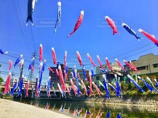 青空を泳ぐ鯉のぼりの写真・画像素材[1139518]