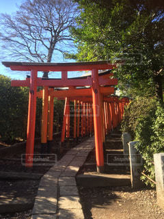 公園内の大きな赤い椅子の写真・画像素材[1001558]