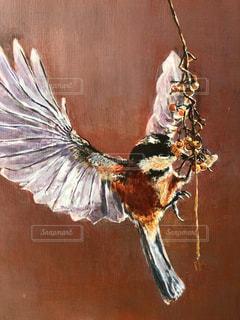 きのみを啄む鳥の写真・画像素材[1002491]