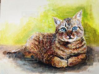 座る猫の写真・画像素材[1003053]