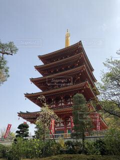 高幡不動尊 五重の塔の写真・画像素材[2749149]
