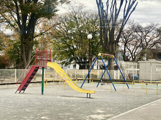 公園の写真・画像素材[3916647]