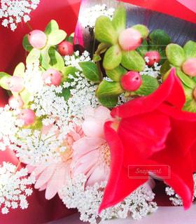 可愛い花束をあなたにの写真・画像素材[1005156]