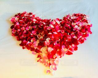 ホテルから薔薇の花ビラのプレゼントの写真・画像素材[1003933]