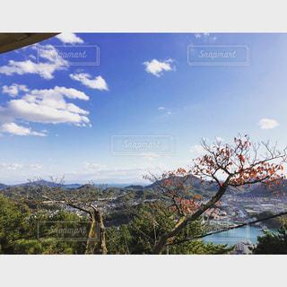 尾道 景色の写真・画像素材[1003950]