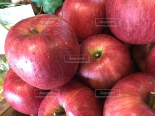 赤いリンゴの写真・画像素材[1004176]