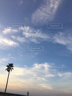 空の雲の写真・画像素材[1004295]
