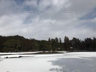 毛越寺の大泉が池の写真・画像素材[1008528]