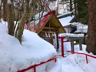 雪に覆われた神社の写真・画像素材[1045212]