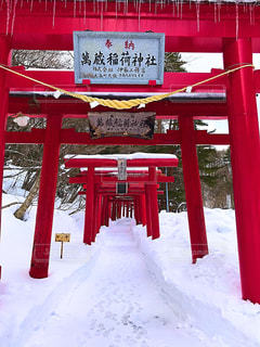 雪に覆われた鳥居の写真・画像素材[1045213]