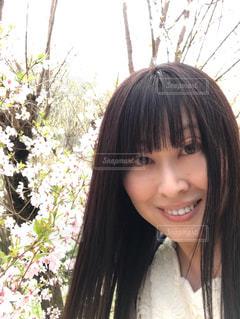 はじめての花見山公園の写真・画像素材[1114992]