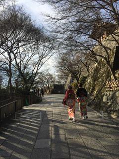 着物で京都の写真・画像素材[1004494]