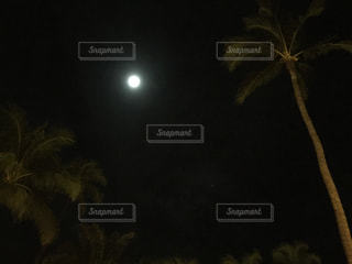 月夜の写真・画像素材[1005166]