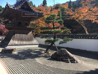 紅葉と枯山水の写真・画像素材[1004250]