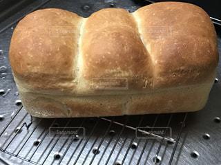 焼きたてパンの写真・画像素材[1006315]