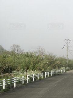 田舎道の写真・画像素材[1006534]
